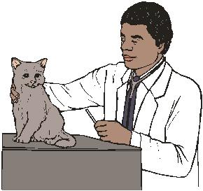 работа ветеринарного провизора в минске